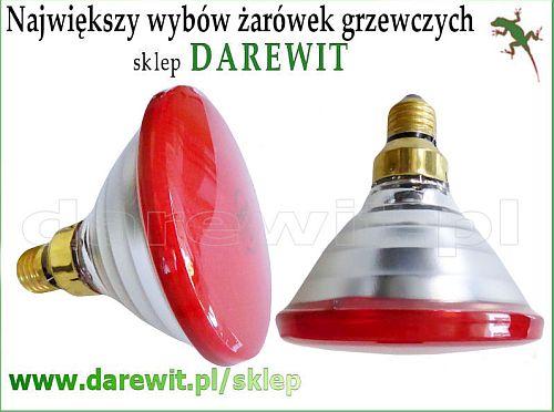 koloroterapia czerwonym światłem - żarówki sklep darewit