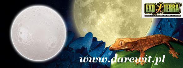 Full Moon lampka do terrarium