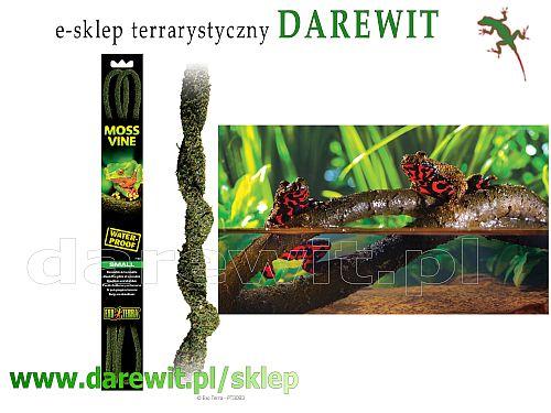 liana do terrarium Exo-terra Moss