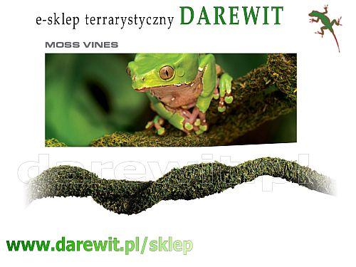 Exo Terra Moss Vine liana do terrarium