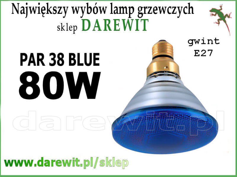NIebieski Sollux PAR 38 - sklep darewit Warszawa