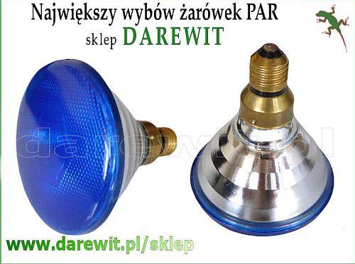 soluks niebieski - sklep darewit Warszawa