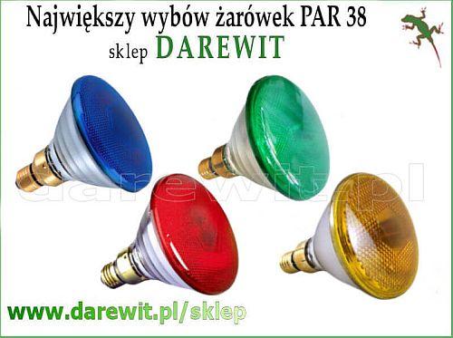kolorowe żarówki w grubym szkle PAR - darewit