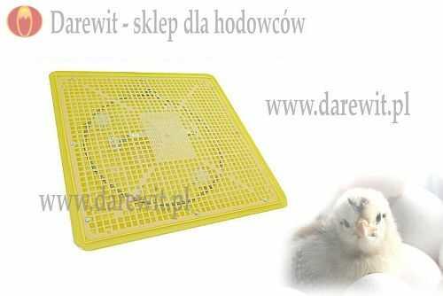 grzałka inkubatora - darewit
