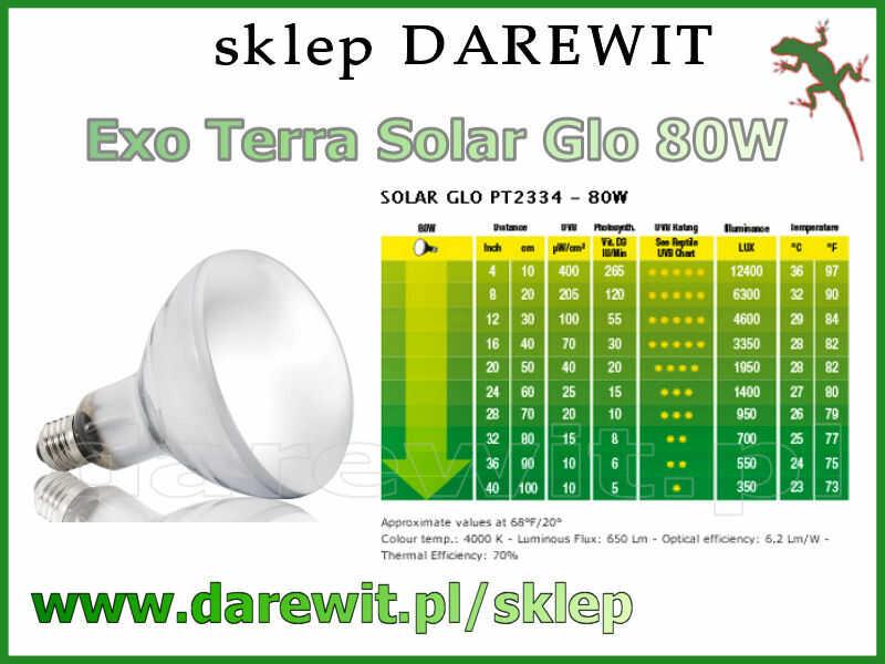 Exo Terra Solar Glo 80W żarówka z UVB - sklep darewit