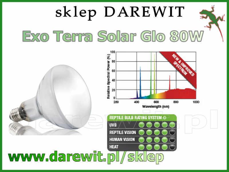 Solra glo 80W Exo Terra domowe słońce - sklep darewit