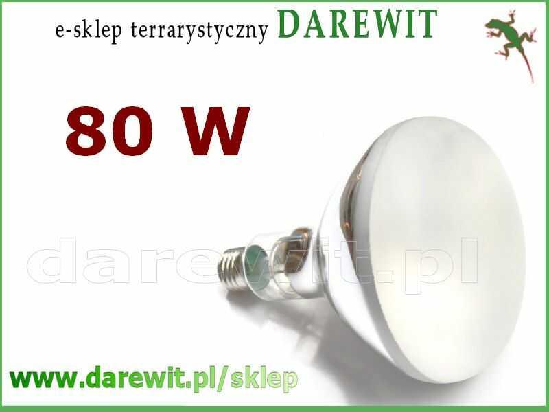 ŻArówka z UVB do terrarium Solar Glo 80W - sklep terrarystyczny Warszawa